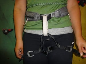 Trad harness